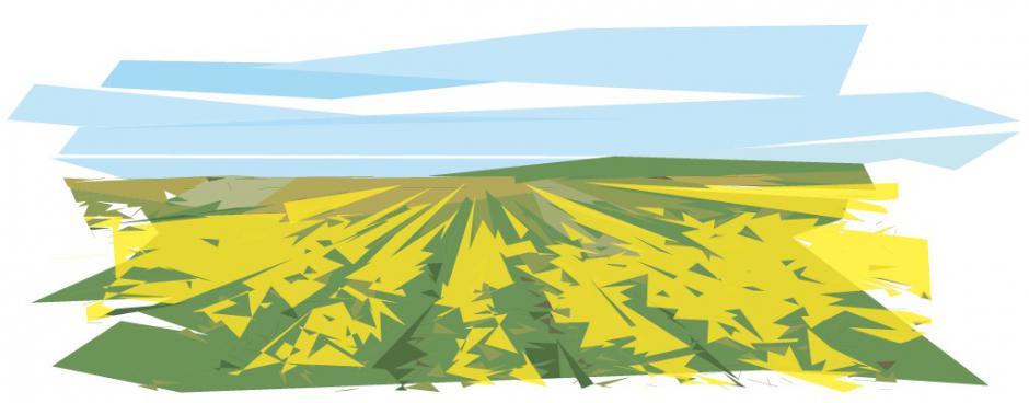 Le productivisme en agriculture, Cyril Roméro*