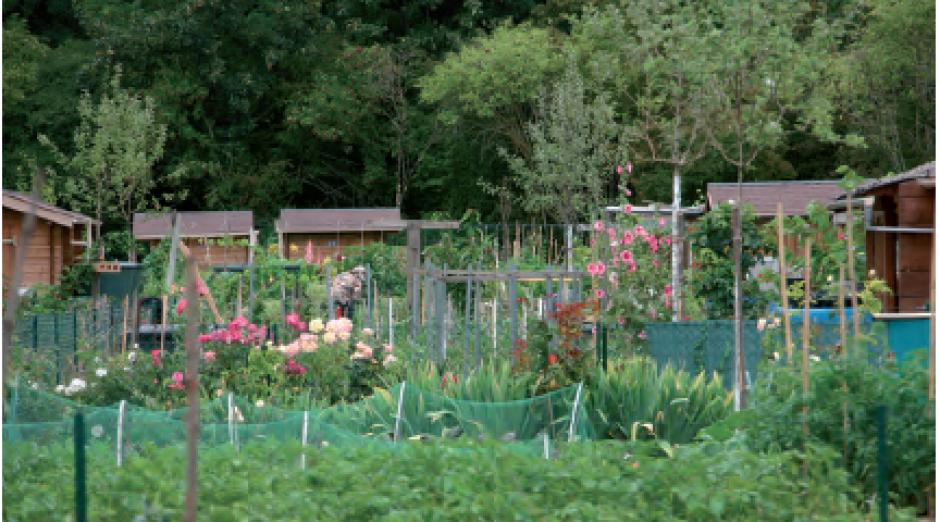 Le jardin dans la ville,  Violette-Ghislaine Lorion-Bouvreuil*