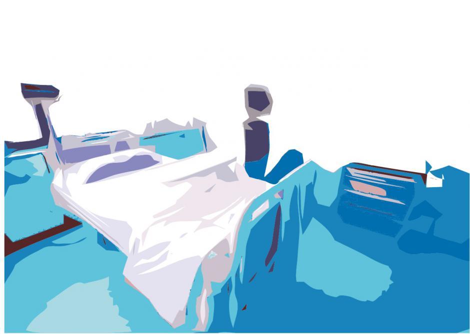 Réformer l'hôpital pour améliorer les services publics, Évelyne Vander Heym