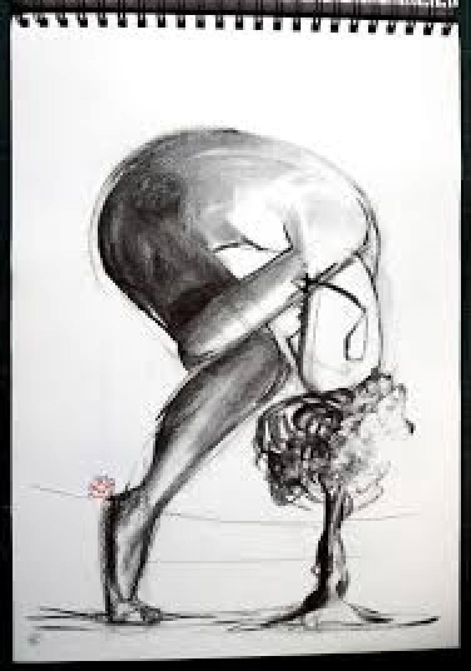 Le modèle et l'expression de la nudité, Frédéric Bouhon*