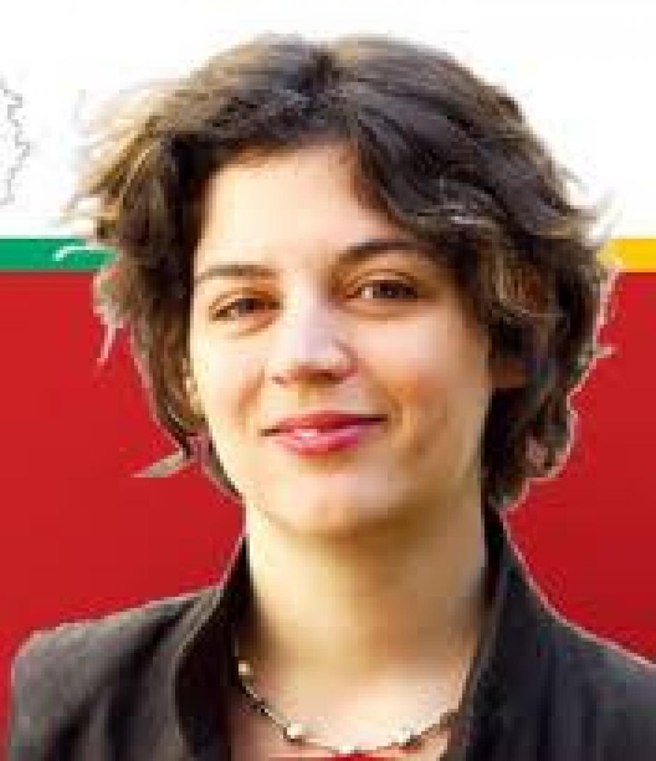 La langue, un enjeu politique,  Entretien avec Marine Roussillon*