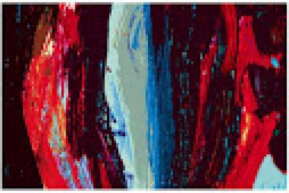 Synthèse des débats, Françoise Chardin